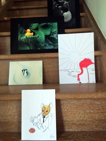 Muriel Monserisier illustrations